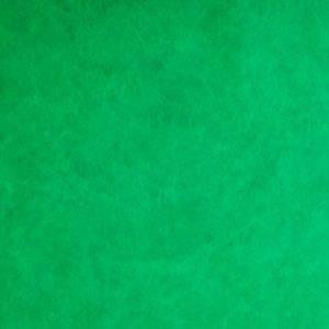 Green Tyvek® 1082D (105 GSM) - Single side print